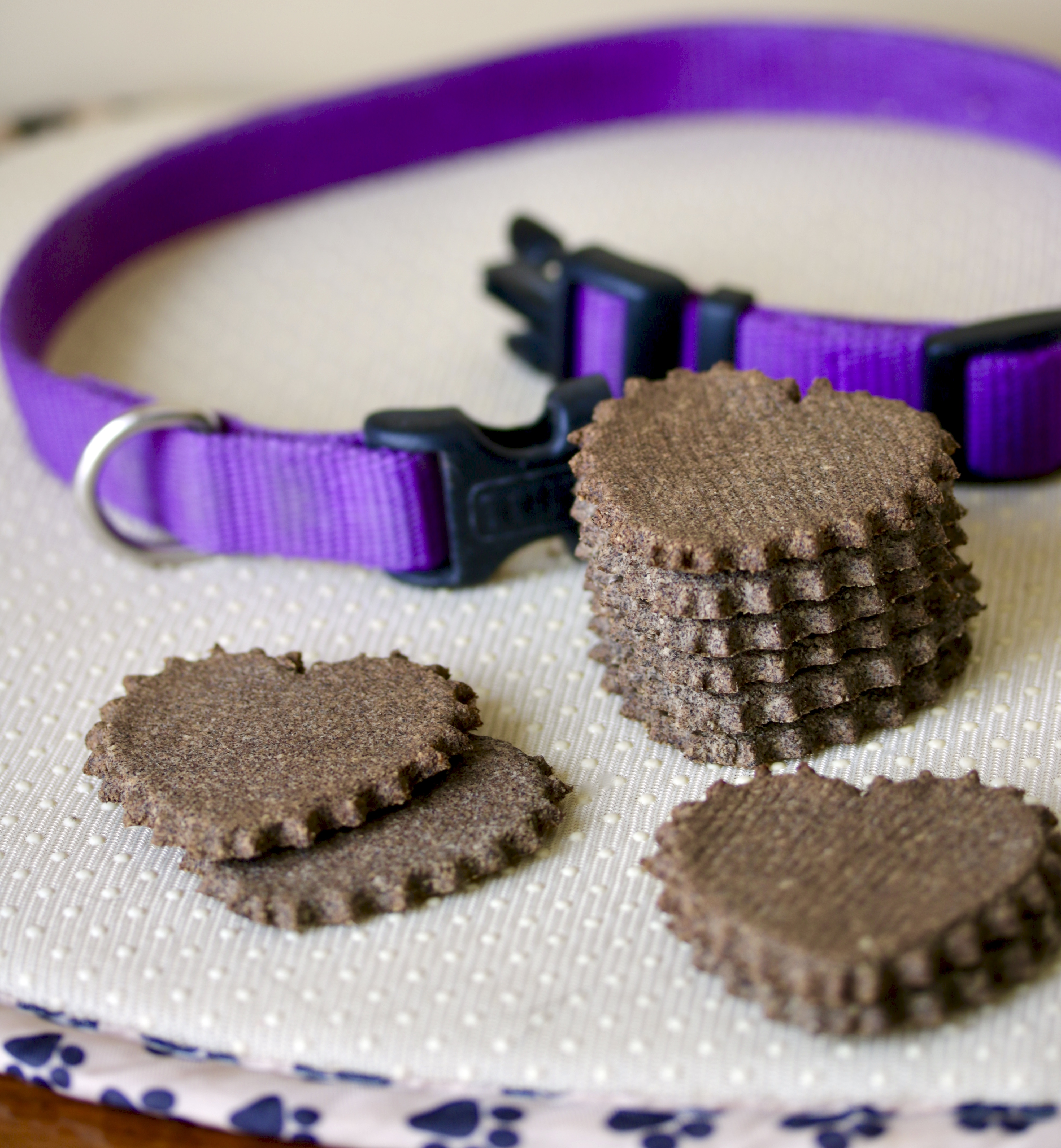 dog biscuits and collar