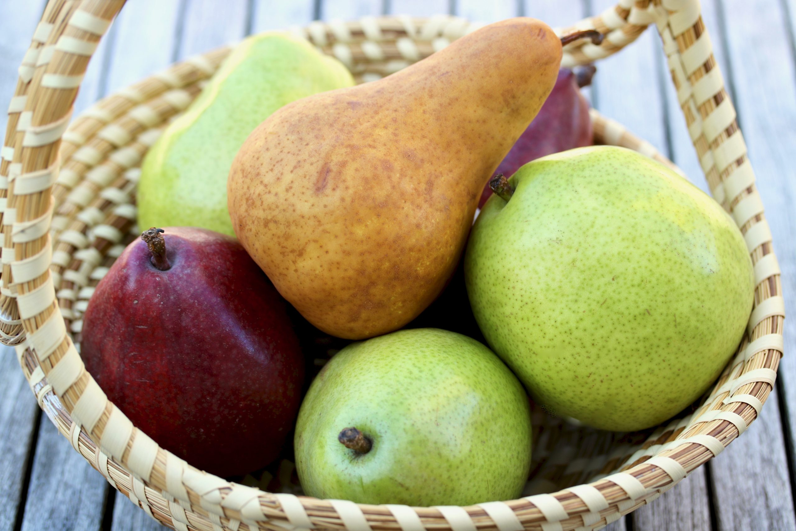 basket of pears in red, green and brown