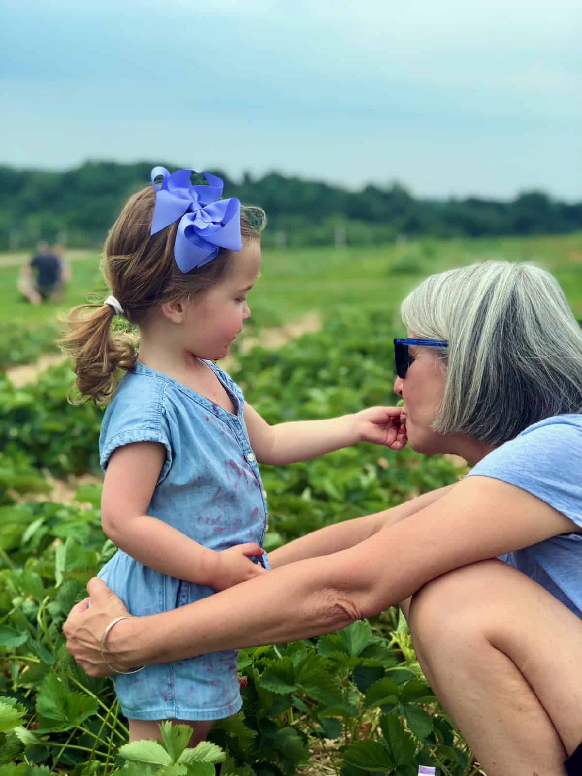strawberry picking with my granddaughter