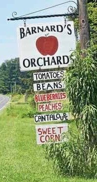 Barnard's orchard sign