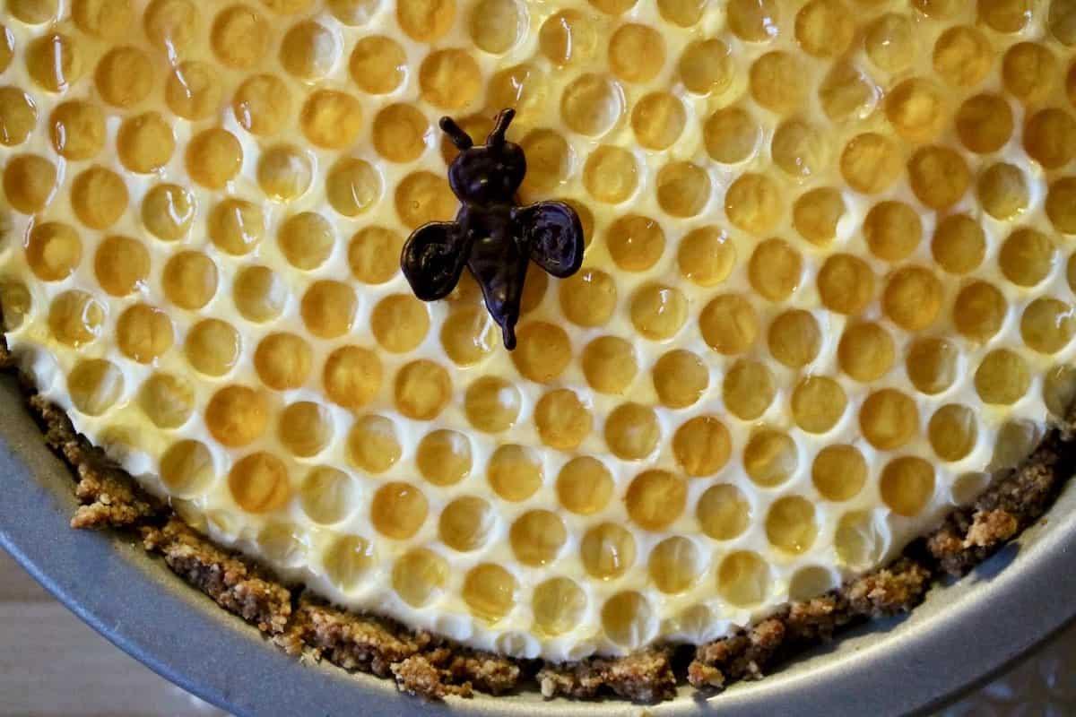 elderberry honeycomb pie