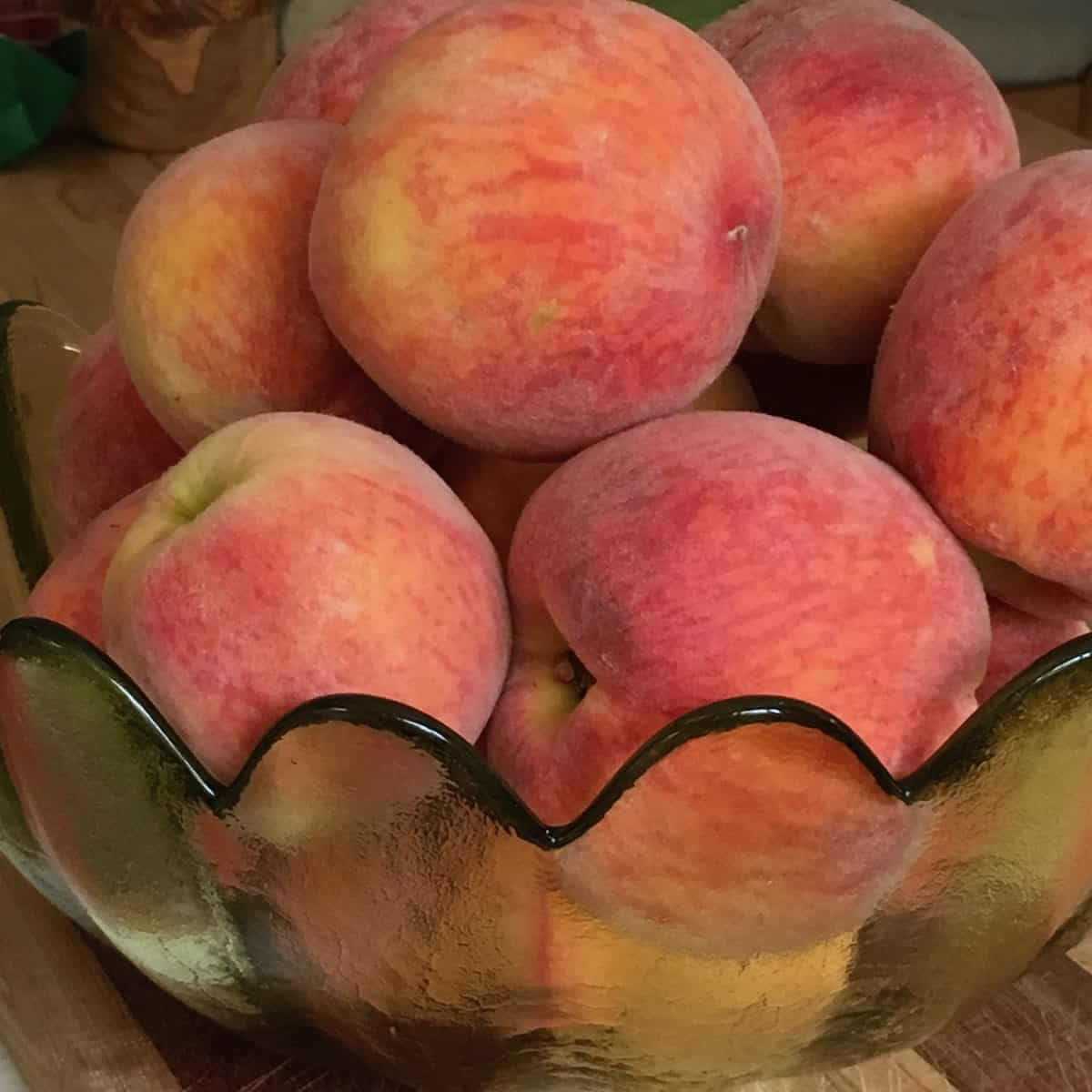 bowl of fresh picked peaches