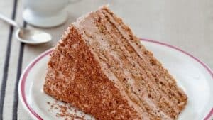grated bread and chocolate cake slice