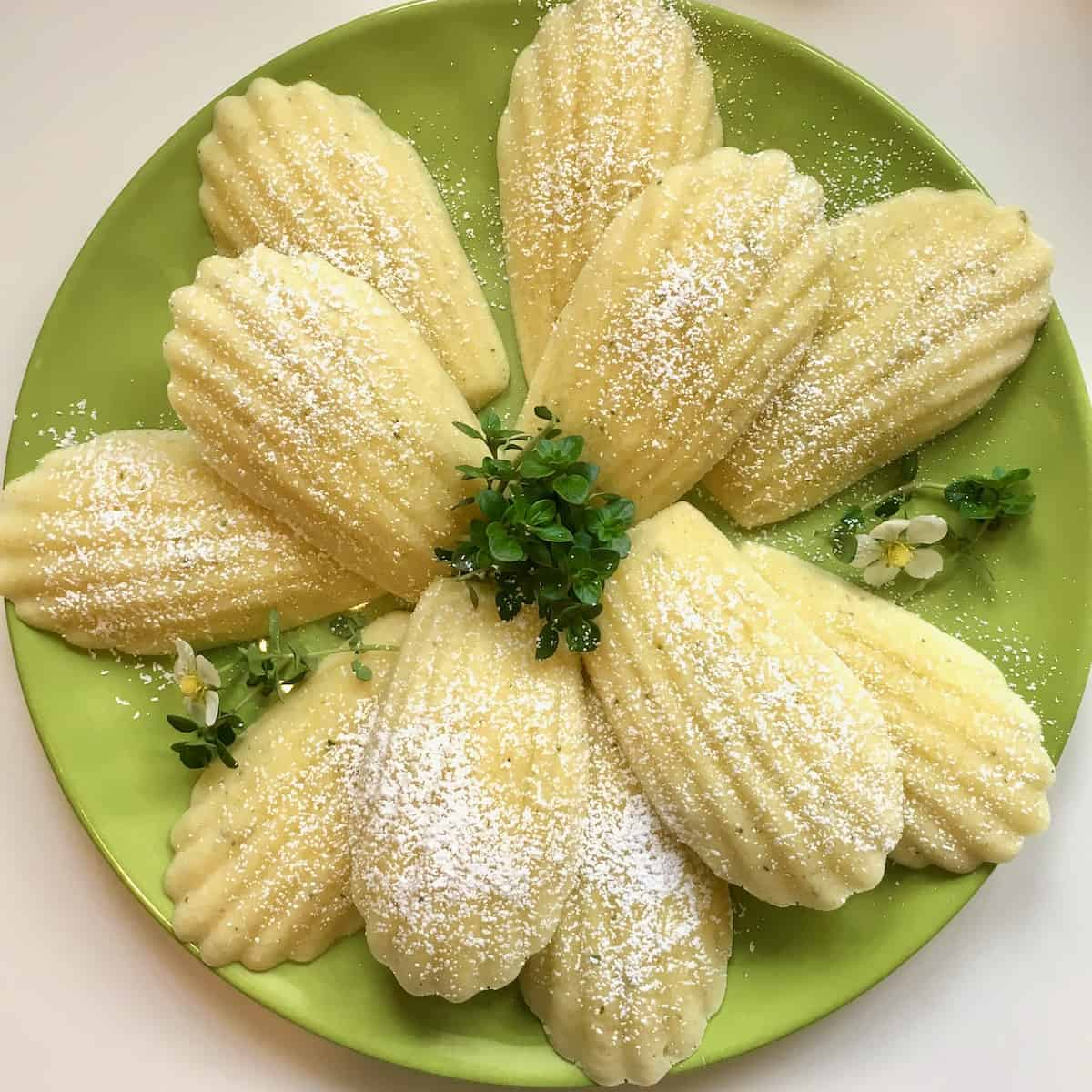 lemon thyme madeleines are good food for thought