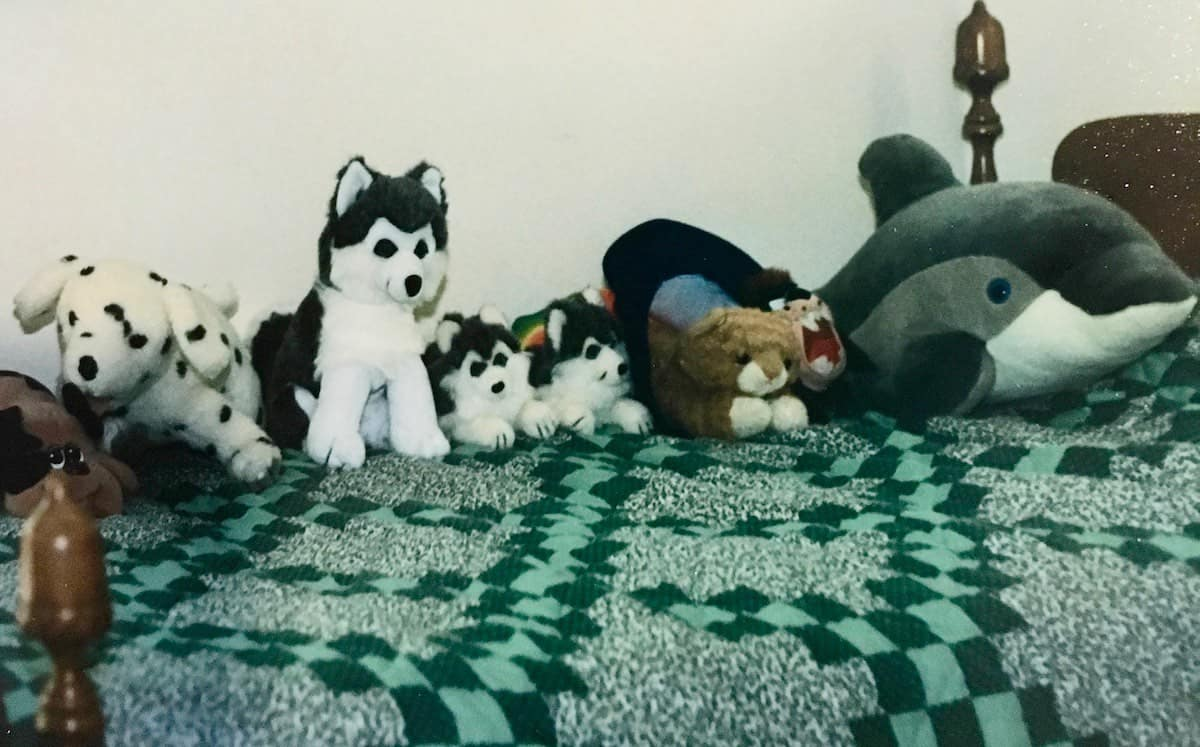 his stuffed animals