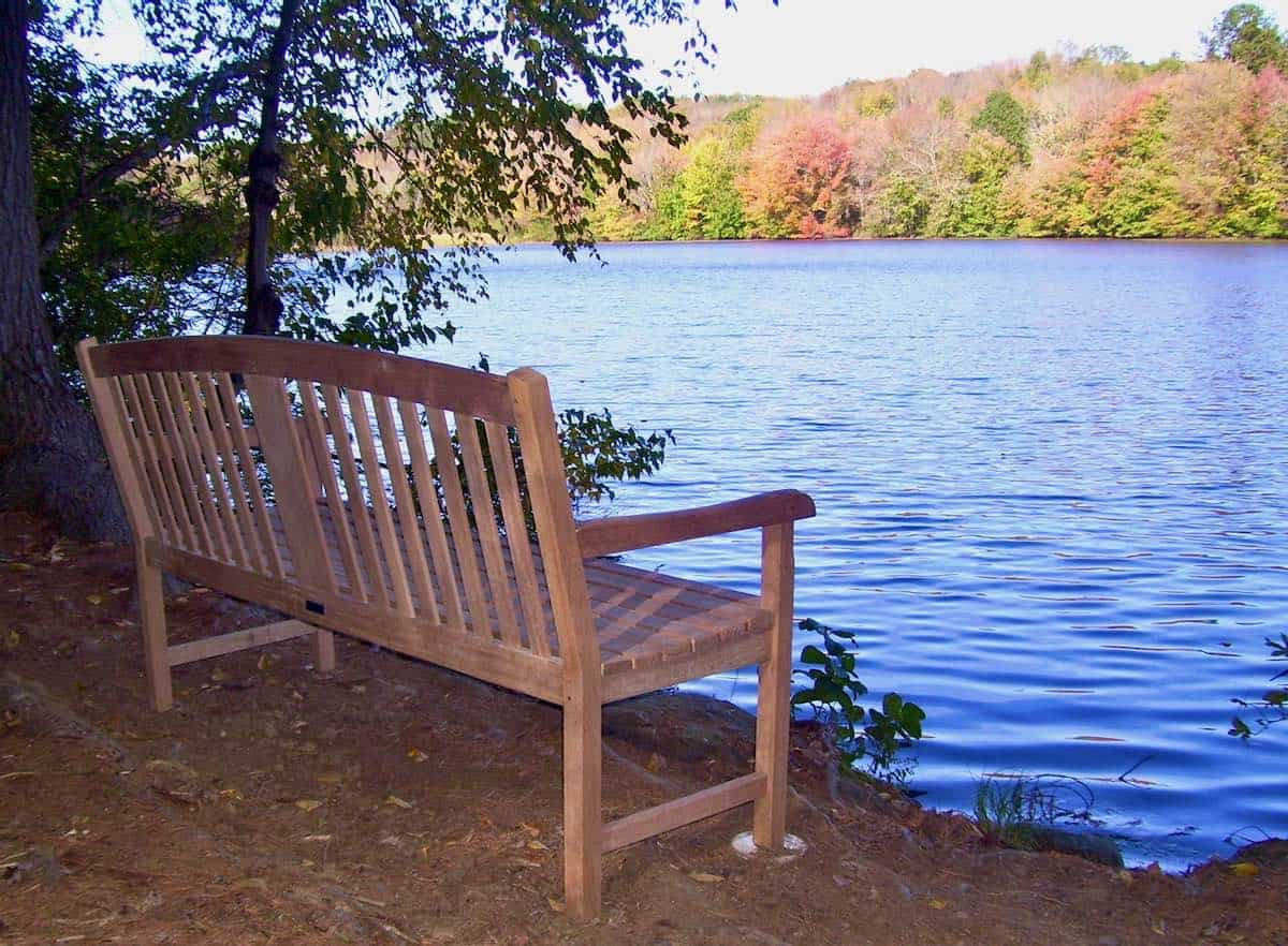Will's Bench at Lake Elise