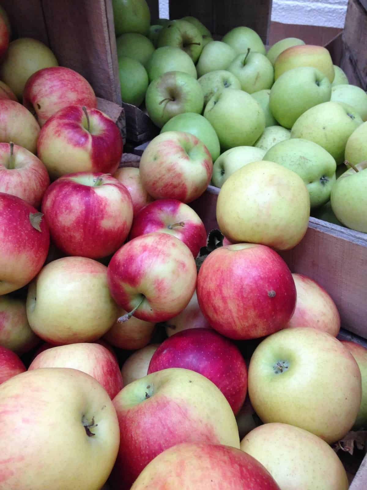 fresh picked apples make a fantastic fennel apple pie