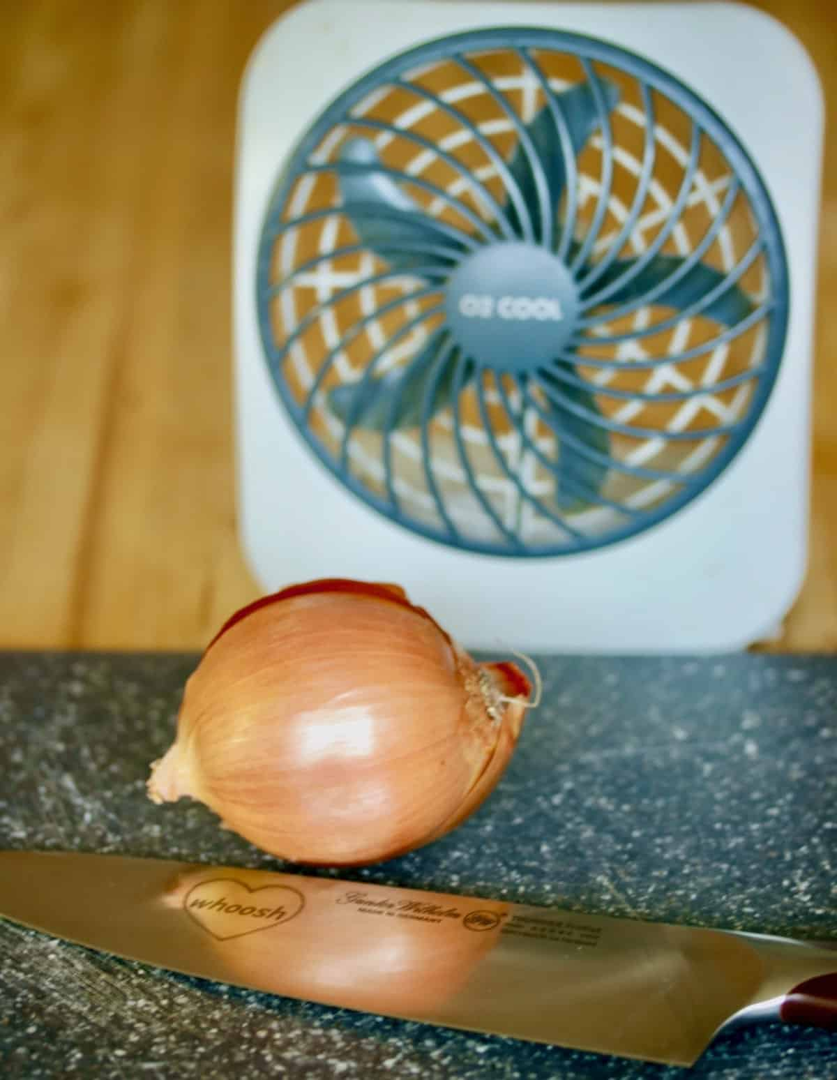 onion with fan and knife