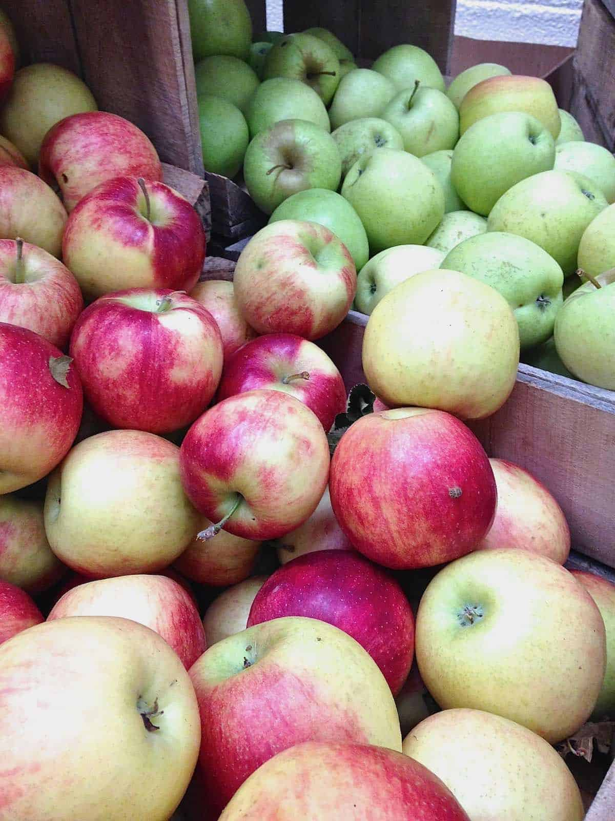 a variety of local farm apples makes the best Cranberry Sausage Stuffed Apples